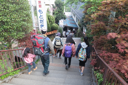20130428_tanzawa_22.JPG
