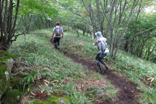 20130906_yatsugatake_05.JPG