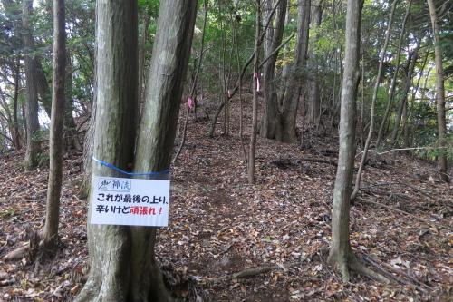 20131109_kanna_41.JPG