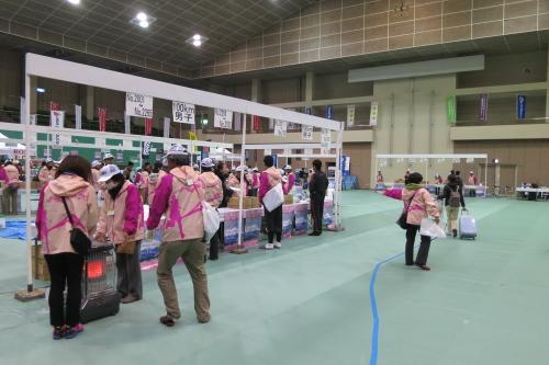 20140419_fujigokopre_02.JPG