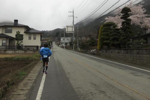20140420_fujigoko_14.JPG