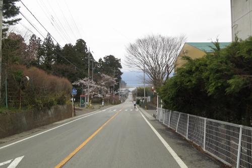 20140420_fujigoko_26.JPG