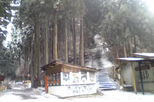 20100310_snow_01.jpg