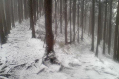 20100310_snow_05.jpg