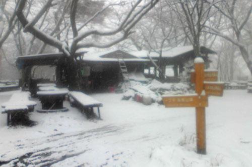 20100310_snow_07.jpg