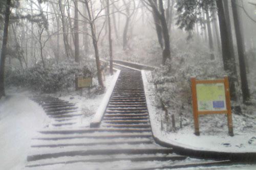 20100310_snow_08.jpg