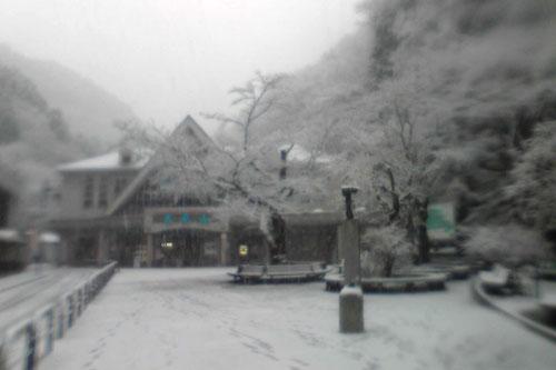 20100310_snow_12.jpg