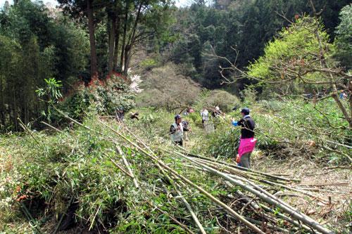 20100410_greenfestival.jpg