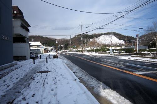 20110101_kyoto_43.JPG