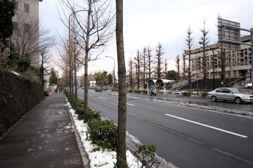 20110101_kyoto_81.JPG