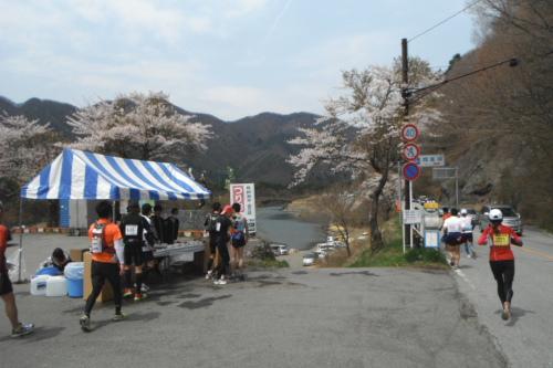 20110430_fujigoko_14.JPG