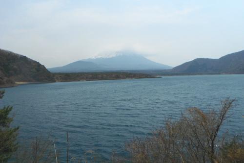 20110430_fujigoko_16.JPG