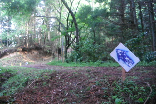 20110605_okukuji_04.JPG