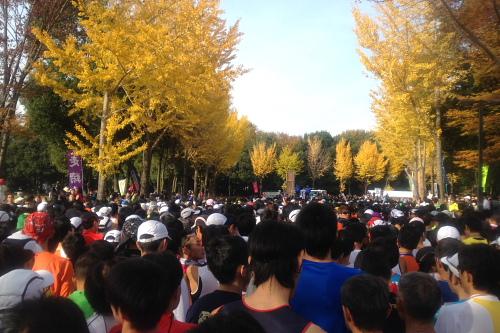 20111127_tsukuba_01.JPG