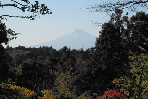 20111204_kamakura_p_08.JPG