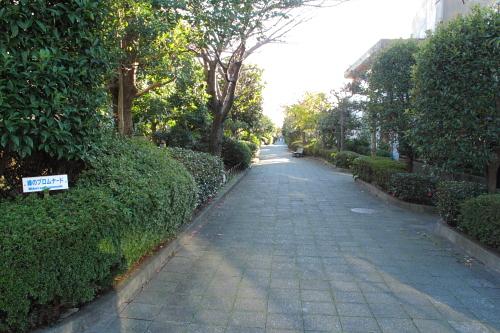 20111204_kamakura_p_16.JPG