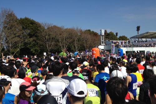 20120325_sakura_02.JPG