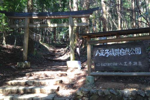 20120401_takao_05.JPG