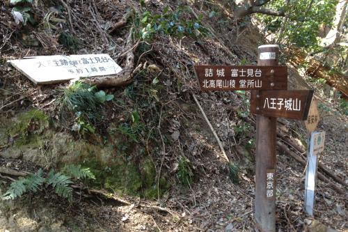 20120401_takao_09.JPG