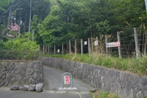 20120504_kyoto_01.jpg
