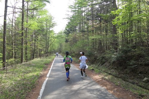 20120520_nobeyama_09.JPG