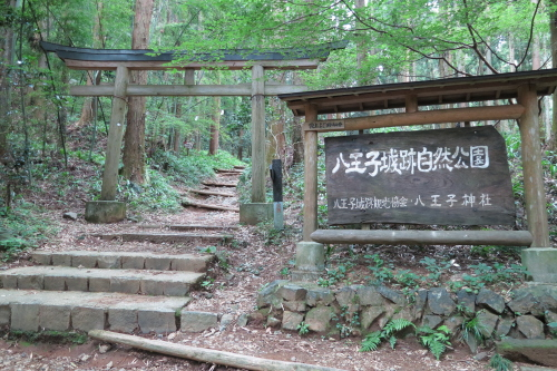 20120701_takao_01.JPG