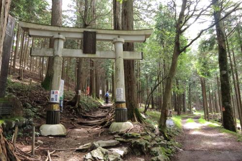 20120819_kumotori_03.JPG