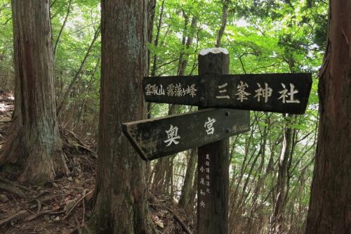 20120819_kumotori_04.JPG