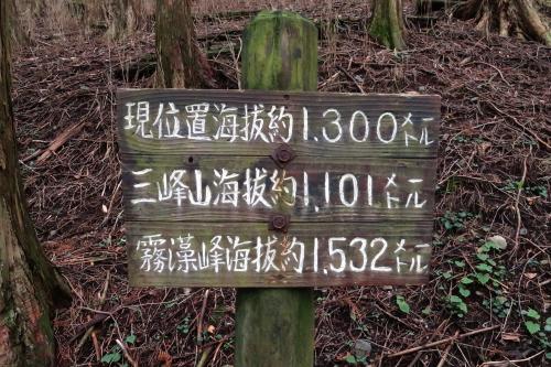 20120819_kumotori_06.JPG