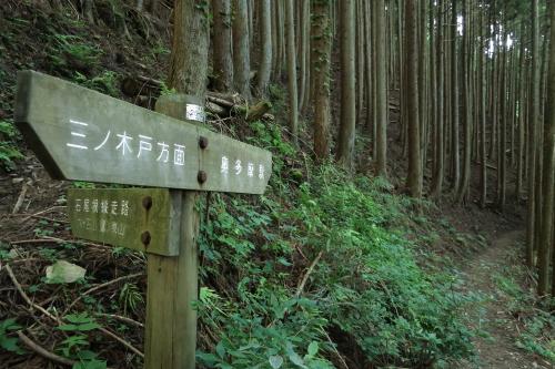 20120819_kumotori_35.JPG