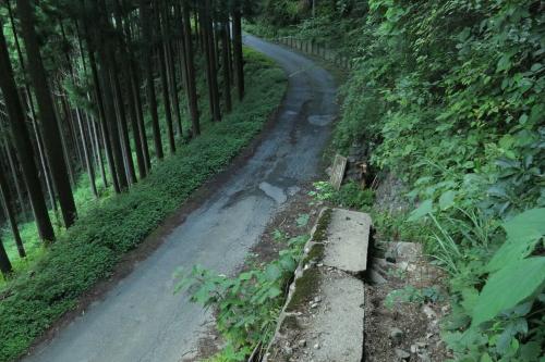 20120819_kumotori_36.JPG