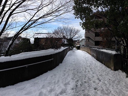 20140209_r_17.jpg